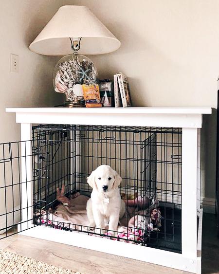 ไอเดียบ้านน้องหมา