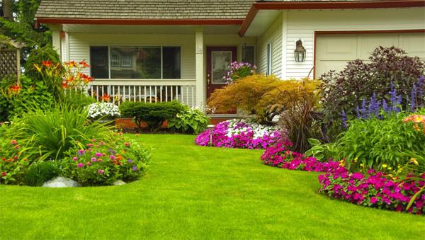 จัดสวนหย่อมหน้าบ้าน