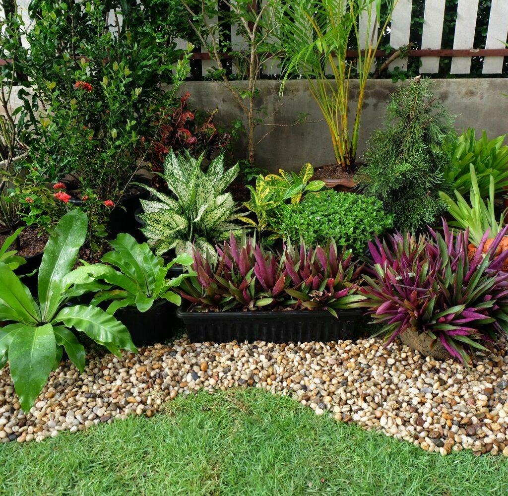 diy สวนหลังบ้านแบบง่ายๆ