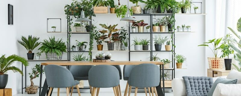 A guide to organizing your home
